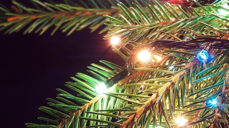 Velg LED-lys når juletreet skal pyntes