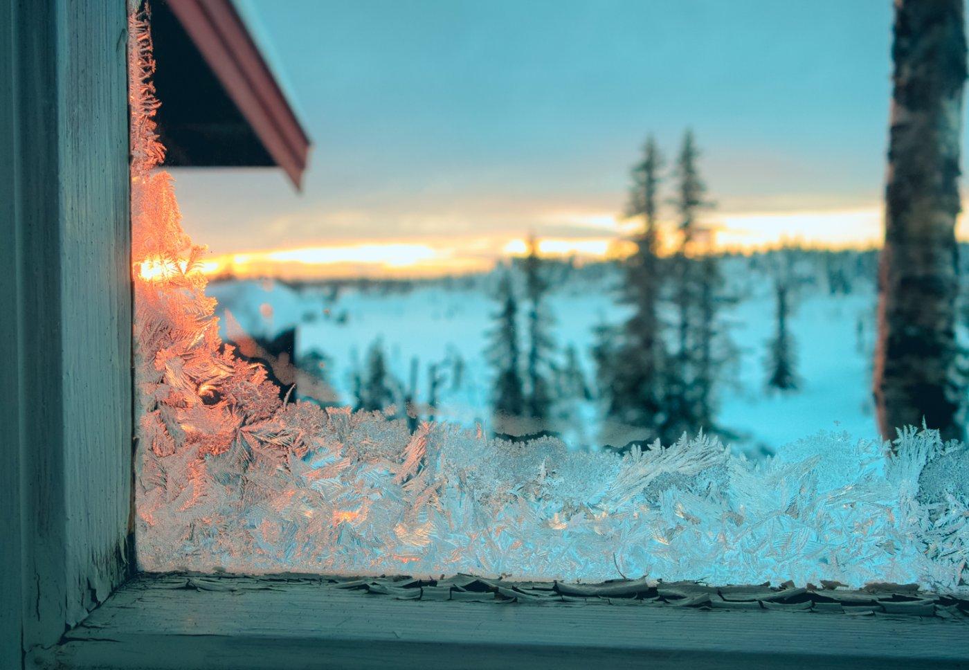 Ser gjennom et vindu med rim i kantene. På utsiden er det er det en vinterskog i solnedgang.